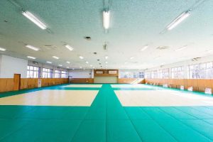 Judo Hall (Martial Arts Gymnasium)01